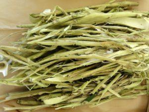 Как используется кора осины