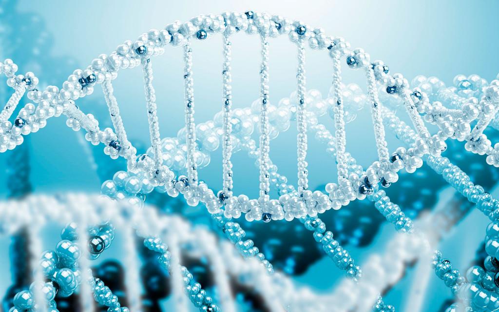 Как заложено в ДНК так и будет